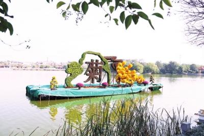 今年菊花文化�看�c多多大河�W