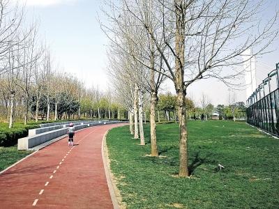 郑州3588公里绿道串起了市内的公园,游园,公交港湾,休闲驿站