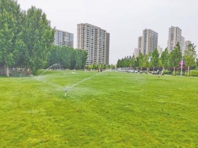 推门见绿开窗见景 郑州每年新增绿地1000万平方米