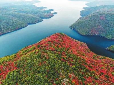 河南将构建渠、湖、山、林有机融合生态绿廊