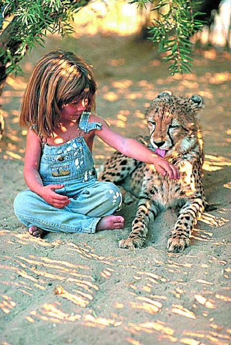 善于用眼睛与动物交流感情的传奇故事--《我的野生动物朋友》,小蒂皮
