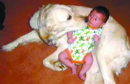 人与动物和谐相处 br/>的感人场景