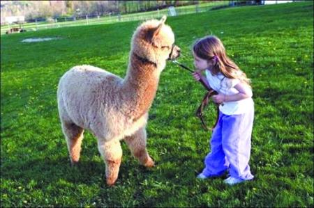 pdf电子阅读器_人与动物和谐相处 的感人场景
