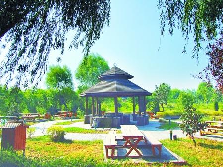 地址:江山路北段黄河大堤东行600米丰乐农庄丰乐葵园风景区