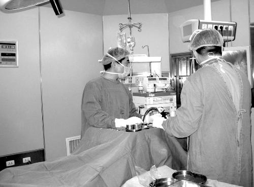 中西医结合治疗过敏性鼻炎的临床研究