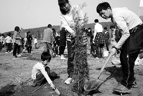 3月10日,6000余名平顶山市民在山顶公园南坡东侧福泽园生高清图片