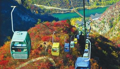 秋实:多彩的中原