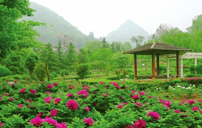 景观生态,厚重的历史文化积淀相得益彰,折射出人与自然的和谐与统一.