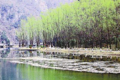 """青天河 位于焦作市博爱县,集山水田园风光于一体,被誉为""""北方三峡""""."""