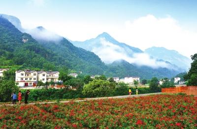 初秋乡村风景照片
