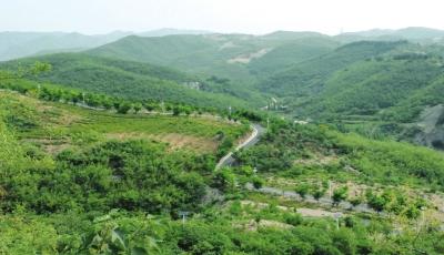 茂然自然风景区