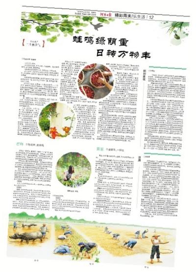 麦穗饺子捏法步骤图解