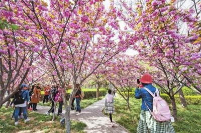 江南春天唯美图片