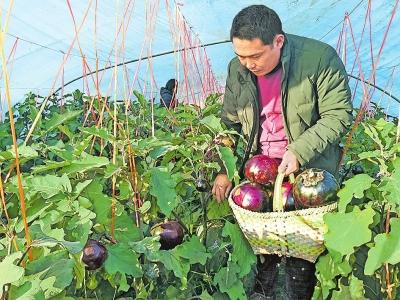 资金扶持带动村民增收致富