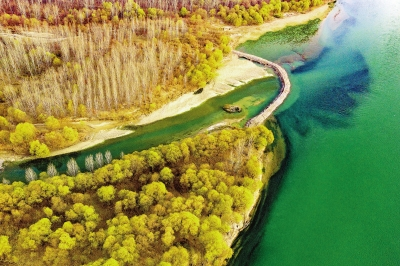 【黃河流域生態保護和高質量發展】加強流域治理筑牢生態屏障