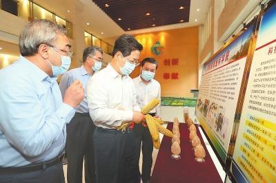 楼阳生到省农科院育种基地、河南大学郑州校区调研时强调 集中优势资源打好种业翻身仗