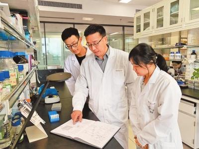 """发现豆科植物共生固氮需光""""信使"""" 我省科研团队原始创新取得重大突破"""