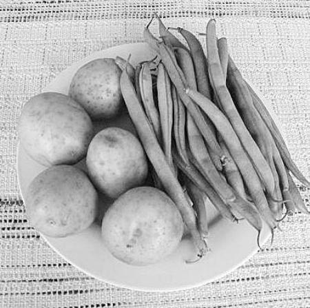 土豆素描画步骤图