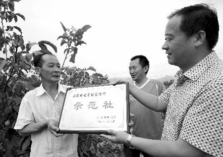 本报记者  杨远高 通讯员 曲璐璐 摄
