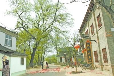 农村屋前花园设计图片