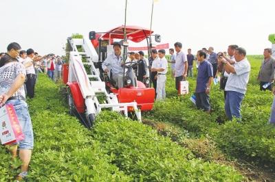 新发地农副产品有限公司和河南中豫庄稼人花生种植专业合作社联手成立
