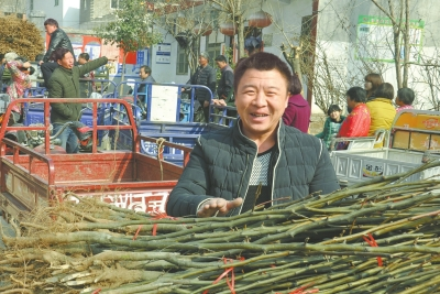 汝阳县柏树乡华沟村:发展林果业拓宽致富路