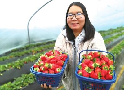 党员创业带动农民发展高效农业