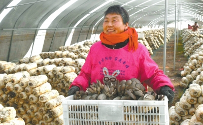 http://www.wzxmy.com/shishangchaoliu/13187.html