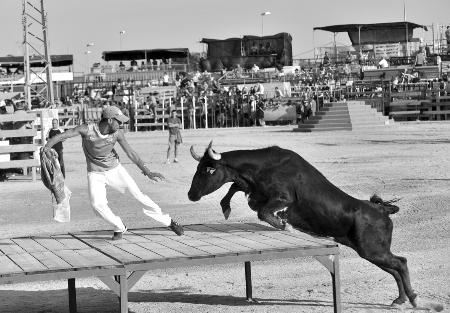 """西班牙""""逗牛"""""""