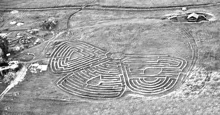 英国最古老的树篱迷宫就是它了.