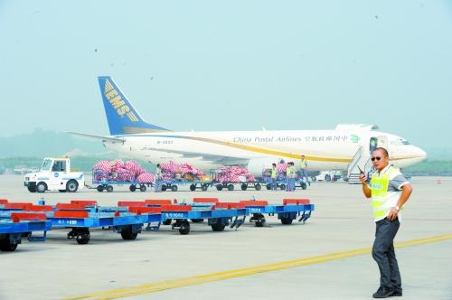天津空港经济区与郑州
