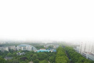 /zhengwu/143768.html
