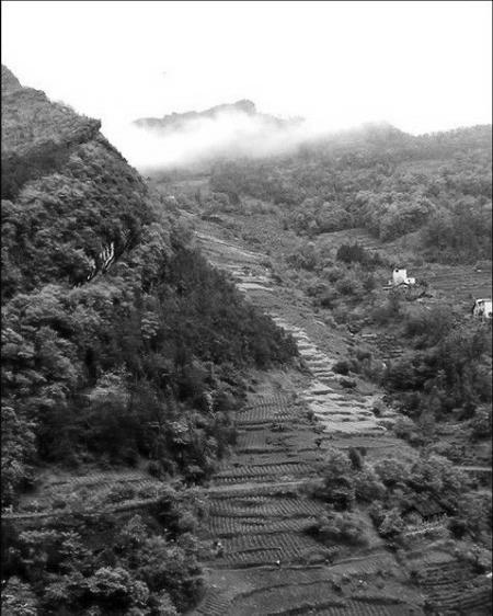 白唐镇地图