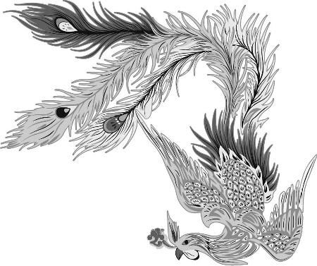 乌龟简笔画 小动物