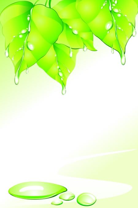 背景 壁纸 绿色 绿叶 设计 矢量 矢量图 树叶 素材 植物 桌面 450_677