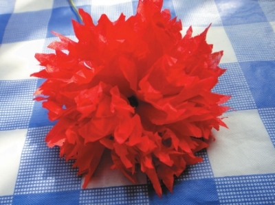 将红色皱纹包装纸剪成大小合适的正方形
