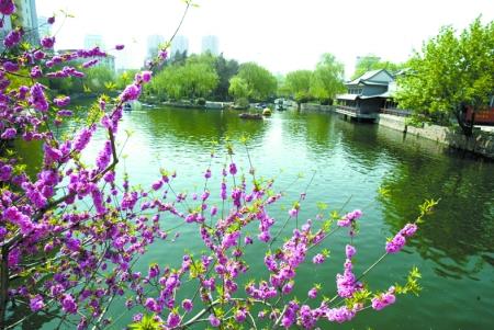 快车月半弯飞碟脚踏车溜冰场影城从郑州市动物园到碧沙岗公园怎么走?