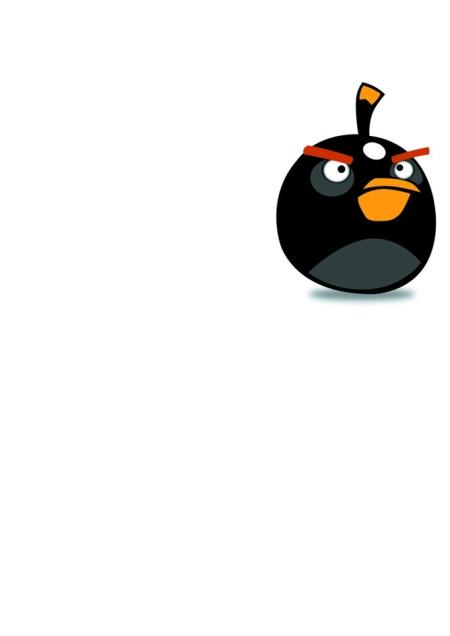 """""""愤怒的小鸟""""在高飞"""